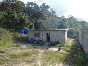 Casa En Ventaen Caracas, El Junquito, Venezuela, VE RAH: 18-2834