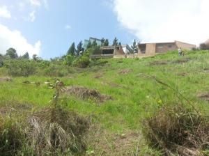 Terreno En Ventaen Caracas, Oripoto, Venezuela, VE RAH: 18-3524