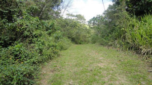 Terreno En Ventaen Paracotos, Parques Del Sur, Venezuela, VE RAH: 18-3383