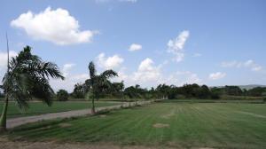 Terreno En Ventaen Yaritagua, Municipio Peña, Venezuela, VE RAH: 18-3986