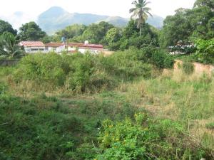 Terreno En Ventaen Maracay, El Limon, Venezuela, VE RAH: 18-5525