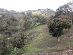 Terreno En Ventaen Caracas, Oripoto, Venezuela, VE RAH: 18-5353