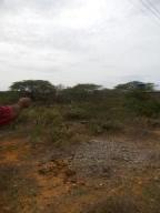 Terreno En Ventaen Punto Fijo, Santa Elena, Venezuela, VE RAH: 18-5707