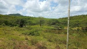 Terreno En Ventaen Piritu, Guamacho, Venezuela, VE RAH: 18-6350