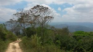 Terreno En Ventaen Paracotos, Parques Del Sur, Venezuela, VE RAH: 18-7023