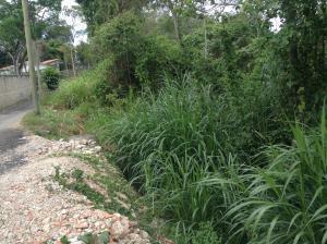 Terreno En Ventaen Carrizal, Municipio Carrizal, Venezuela, VE RAH: 18-8005