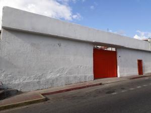 Industrial En Ventaen Ejido, Trapiche, Venezuela, VE RAH: 18-7654