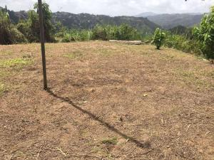Terreno En Ventaen Caracas, El Hatillo, Venezuela, VE RAH: 18-8489