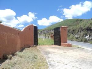 Terreno En Ventaen La Victoria, Loma Brisa, Venezuela, VE RAH: 18-8715
