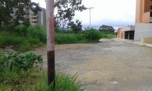 Terreno En Ventaen Barquisimeto, Parroquia Santa Rosa, Venezuela, VE RAH: 18-9446