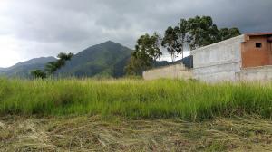Terreno En Ventaen Municipio Naguanagua, La Entrada, Venezuela, VE RAH: 18-9821