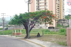 Terreno En Ventaen Guarenas, El Calvario, Venezuela, VE RAH: 18-10751