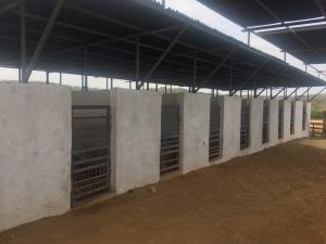 Galpon - Deposito En Ventaen Pueblo Nuevo, Pueblo Nuevo, Venezuela, VE RAH: 18-10461