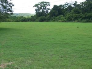 Terreno En Ventaen Charallave, Las Juajuitas, Venezuela, VE RAH: 18-10658