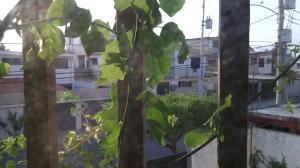 Casa En Ventaen Maracaibo, Canaima, Venezuela, VE RAH: 18-16436