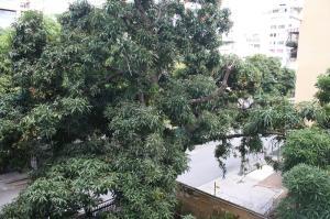Apartamento En Alquileren Caracas, Los Palos Grandes, Venezuela, VE RAH: 18-12052