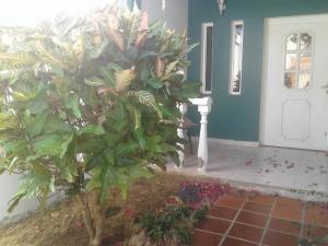 Casa En Ventaen Punto Fijo, Puerta Maraven, Venezuela, VE RAH: 18-12112