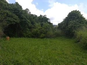 Terreno En Ventaen Caracas, El Hatillo, Venezuela, VE RAH: 18-12747