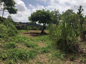 Terreno En Ventaen Caracas, El Hatillo, Venezuela, VE RAH: 18-12748