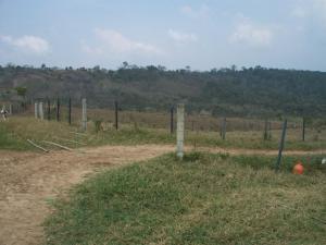 Terreno En Ventaen Escuque, El Alto De Escuque, Venezuela, VE RAH: 18-13217