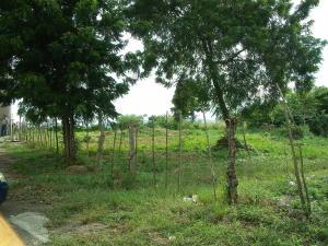 Terreno En Ventaen Yaritagua, Municipio Peña, Venezuela, VE RAH: 18-13385