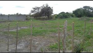 Terreno En Ventaen Cabudare, Parroquia José Gregorio, Venezuela, VE RAH: 19-341