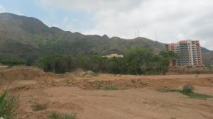 Terreno En Ventaen Municipio Naguanagua, Maã±Ongo, Venezuela, VE RAH: 19-1806