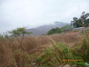 Terreno En Ventaen La Victoria, El Recreo, Venezuela, VE RAH: 19-3084
