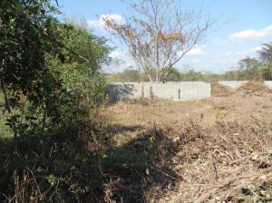 Terreno En Ventaen Cabudare, El Placer, Venezuela, VE RAH: 19-3581