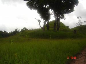 Terreno En Ventaen Los Teques, Los Montes Verdes, Venezuela, VE RAH: 19-4081
