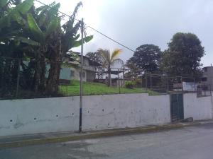 Terreno En Ventaen Carrizal, Municipio Carrizal, Venezuela, VE RAH: 19-4227