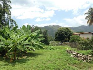 Terreno En Ventaen Maracay, El Castaño (Zona Privada), Venezuela, VE RAH: 19-4406
