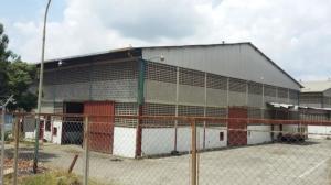 Galpon - Deposito En Alquileren Charallave, Alvarenga, Venezuela, VE RAH: 19-5204