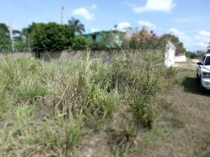 Terreno En Ventaen Higuerote, Santa Isabel Sotillo, Venezuela, VE RAH: 19-5515