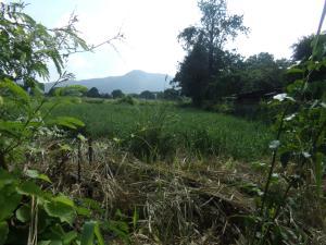 Terreno En Ventaen Municipio San Diego, La Cumaca, Venezuela, VE RAH: 19-5523