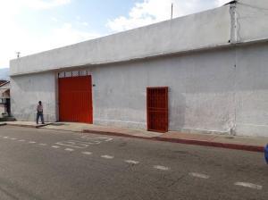Industrial En Ventaen Ejido, Trapiche, Venezuela, VE RAH: 19-6410