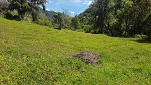 Terreno En Ventaen Tabay, Buena Vista, Venezuela, VE RAH: 19-6529