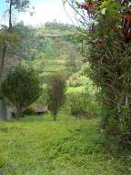 Terreno En Ventaen Municipio Los Salias, Mirador Panamericano, Venezuela, VE RAH: 19-6531