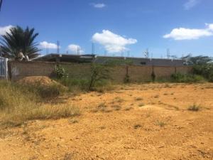 Terreno En Ventaen Punto Fijo, Guanadito, Venezuela, VE RAH: 19-7281
