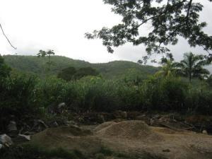Terreno En Ventaen Valencia, Guataparo, Venezuela, VE RAH: 19-8755