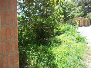 Terreno En Ventaen San Antonio De Los Altos, La Peña, Venezuela, VE RAH: 19-9413