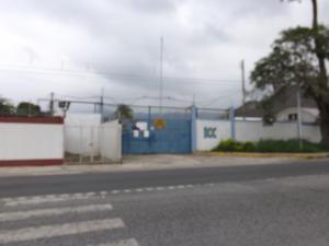 Galpon - Deposito En Ventaen Municipio Diego Ibarra, Mariara, Venezuela, VE RAH: 19-9513