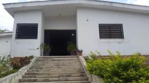 Casa En Ventaen San Juan De Los Morros, Antonio Miguel Martinez, Venezuela, VE RAH: 19-9722