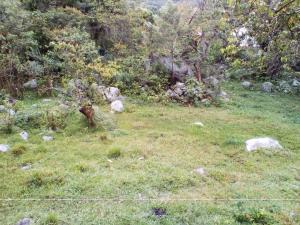 Terreno En Ventaen Merida, El Valle, Venezuela, VE RAH: 19-10501