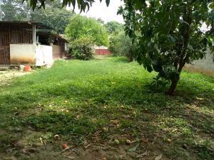 Terreno En Ventaen Cabudare, La Piedad Norte, Venezuela, VE RAH: 19-10532