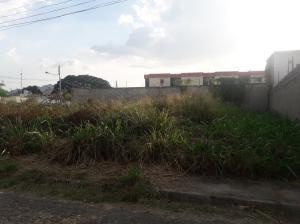 Terreno En Ventaen Municipio San Diego, Los Tamarindos, Venezuela, VE RAH: 19-12120