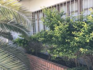 Casa En Ventaen Punto Fijo, Puerta Maraven, Venezuela, VE RAH: 19-11929