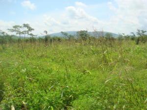 Terreno En Ventaen Yaritagua, Municipio Peña, Venezuela, VE RAH: 19-12876