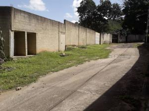 Terreno En Ventaen Valencia, Colinas De Guataparo, Venezuela, VE RAH: 19-13197