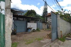Local Comercial En Alquileren Caracas, El Pedregal, Venezuela, VE RAH: 19-15875